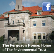 The Fergusen House